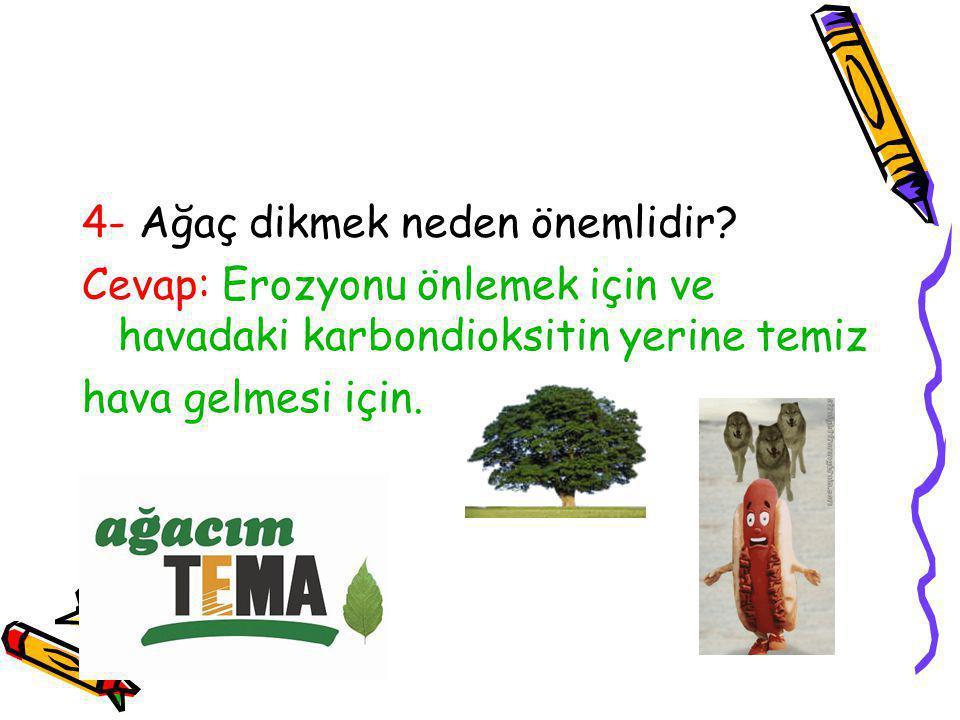 4- Ağaç dikmek neden önemlidir