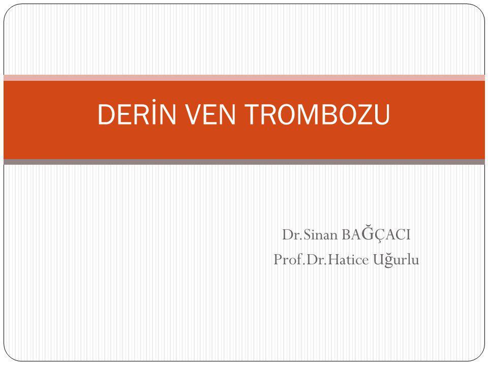 Dr.Sinan BAĞÇACI Prof.Dr.Hatice Uğurlu