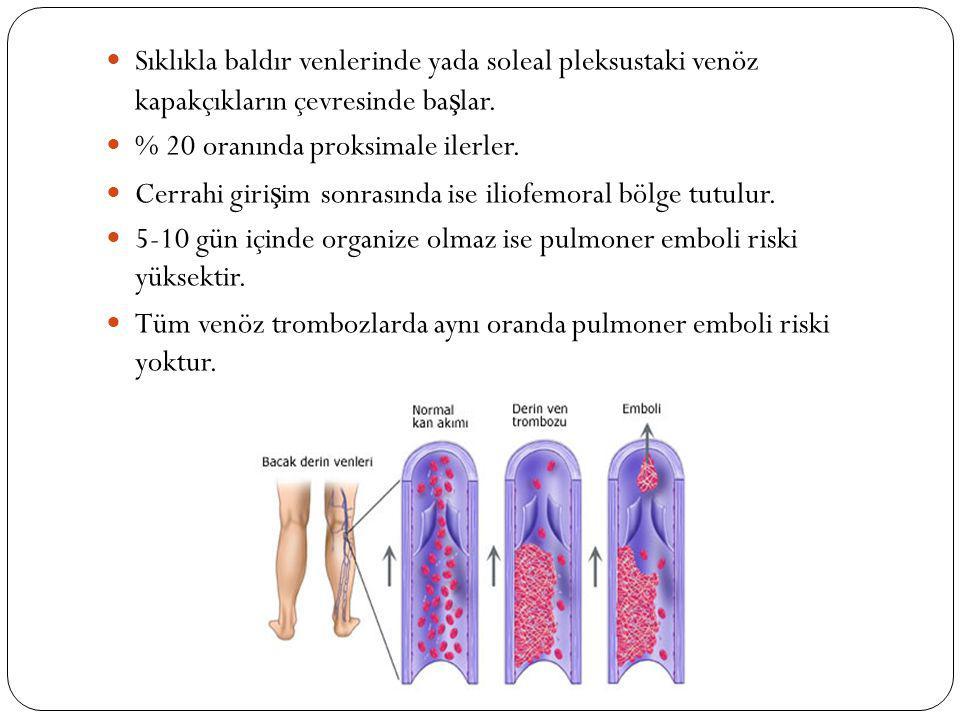 Sıklıkla baldır venlerinde yada soleal pleksustaki venöz kapakçıkların çevresinde başlar.