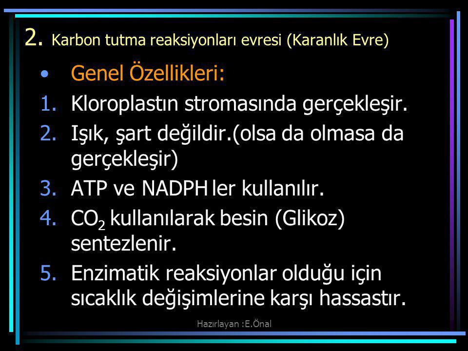 2. Karbon tutma reaksiyonları evresi (Karanlık Evre)