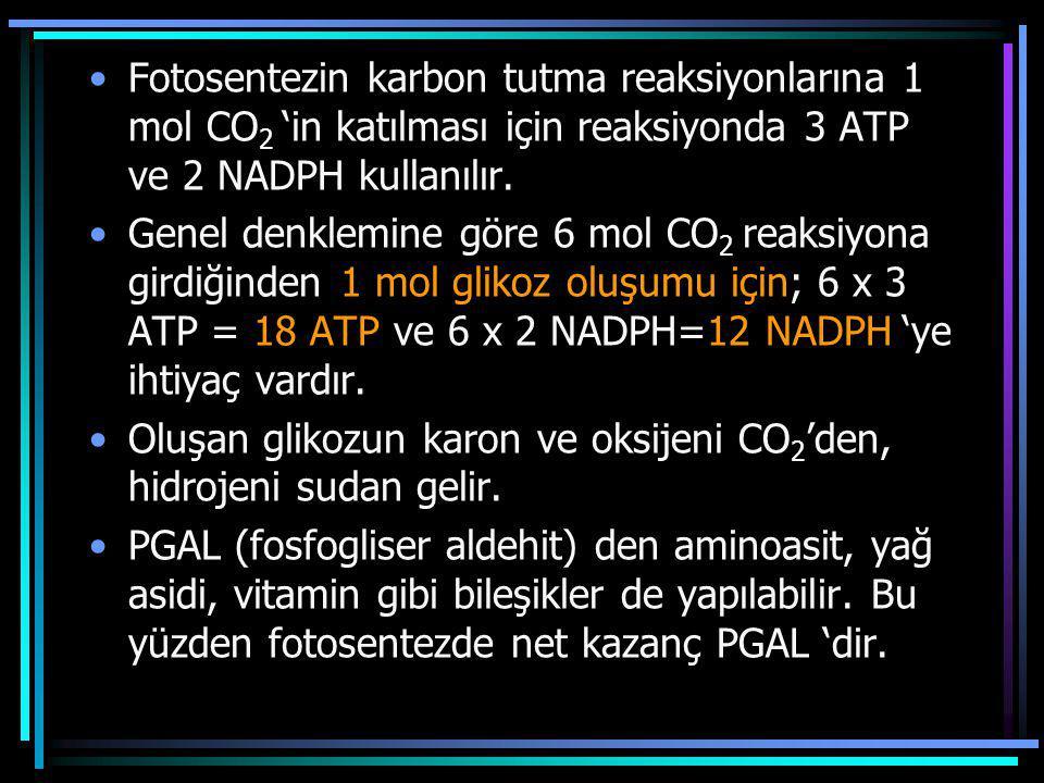 Fotosentezin karbon tutma reaksiyonlarına 1 mol CO2 'in katılması için reaksiyonda 3 ATP ve 2 NADPH kullanılır.