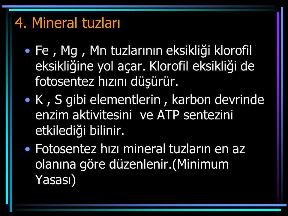 4. Mineral tuzları Fe , Mg , Mn tuzlarının eksikliği klorofil eksikliğine yol açar. Klorofil eksikliği de fotosentez hızını düşürür.