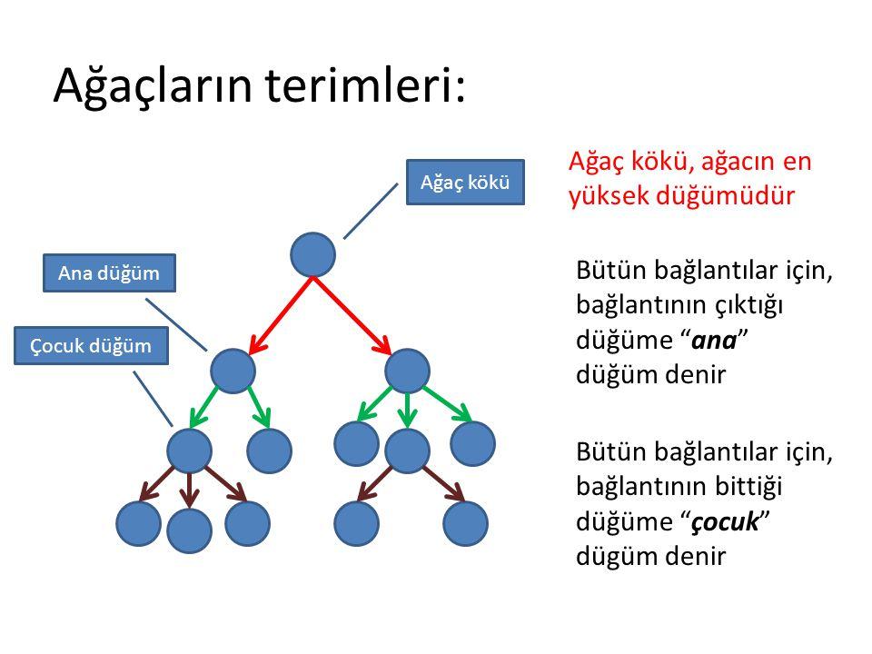 Ağaçların terimleri: Ağaç kökü, ağacın en yüksek düğümüdür