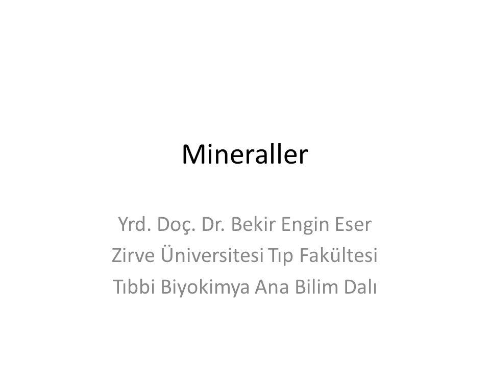 Mineraller Yrd. Doç. Dr. Bekir Engin Eser