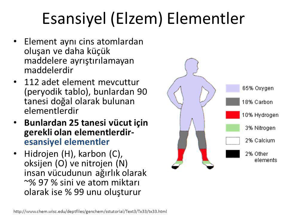 Esansiyel (Elzem) Elementler