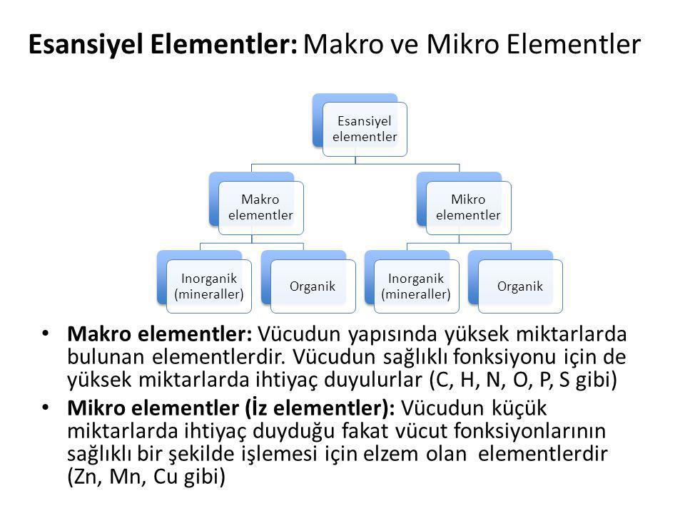Esansiyel Elementler: Makro ve Mikro Elementler