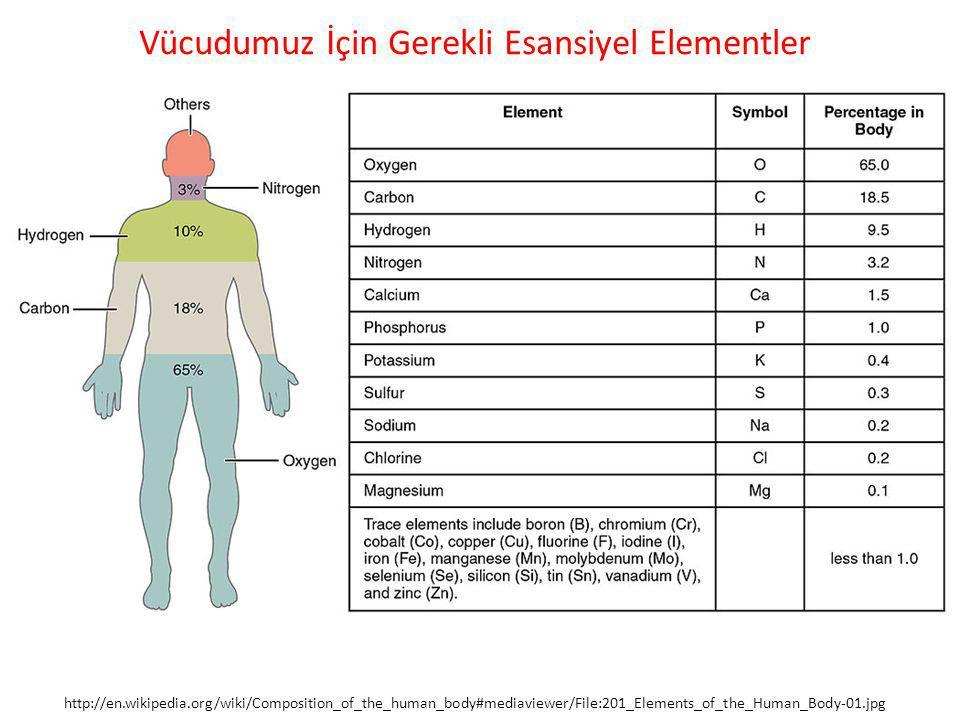 Vücudumuz İçin Gerekli Esansiyel Elementler