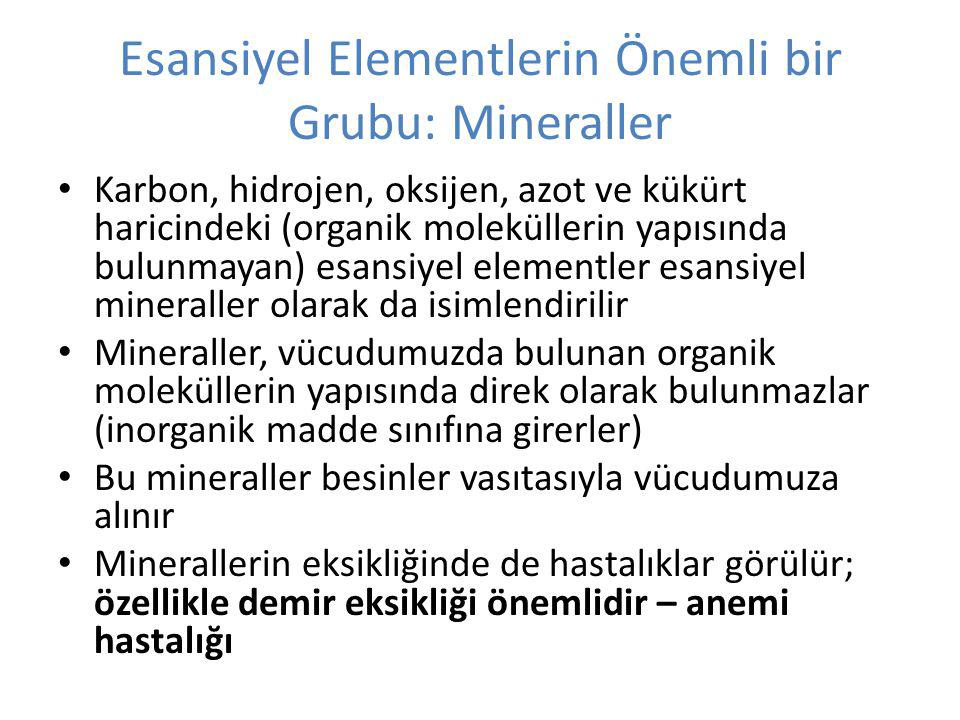 Esansiyel Elementlerin Önemli bir Grubu: Mineraller