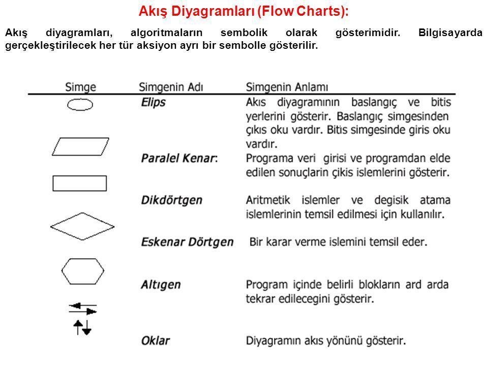 Akış Diyagramları (Flow Charts):