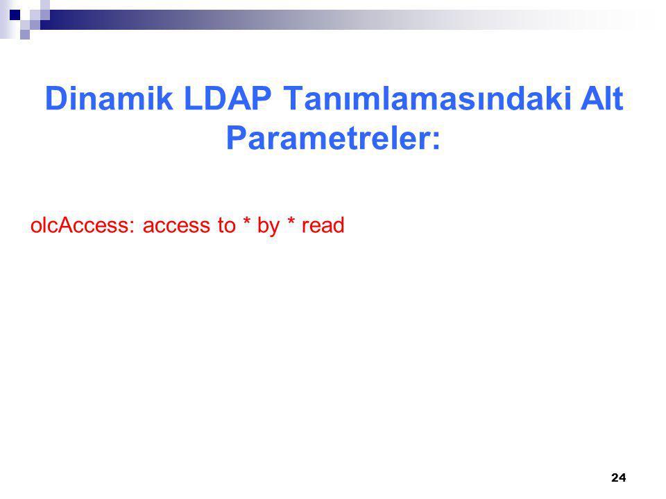 Dinamik LDAP Tanımlamasındaki Alt Parametreler: