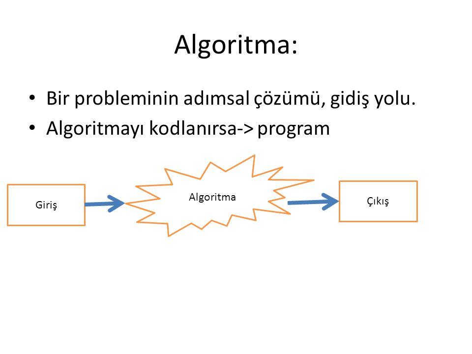Algoritma: Bir probleminin adımsal çözümü, gidiş yolu.