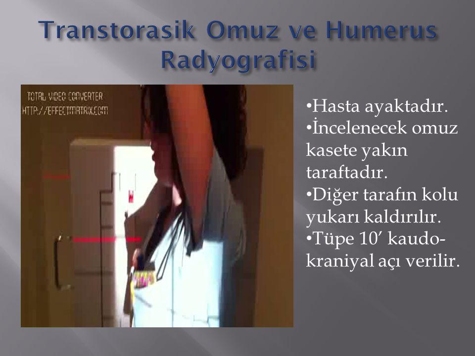 Transtorasik Omuz ve Humerus Radyografisi