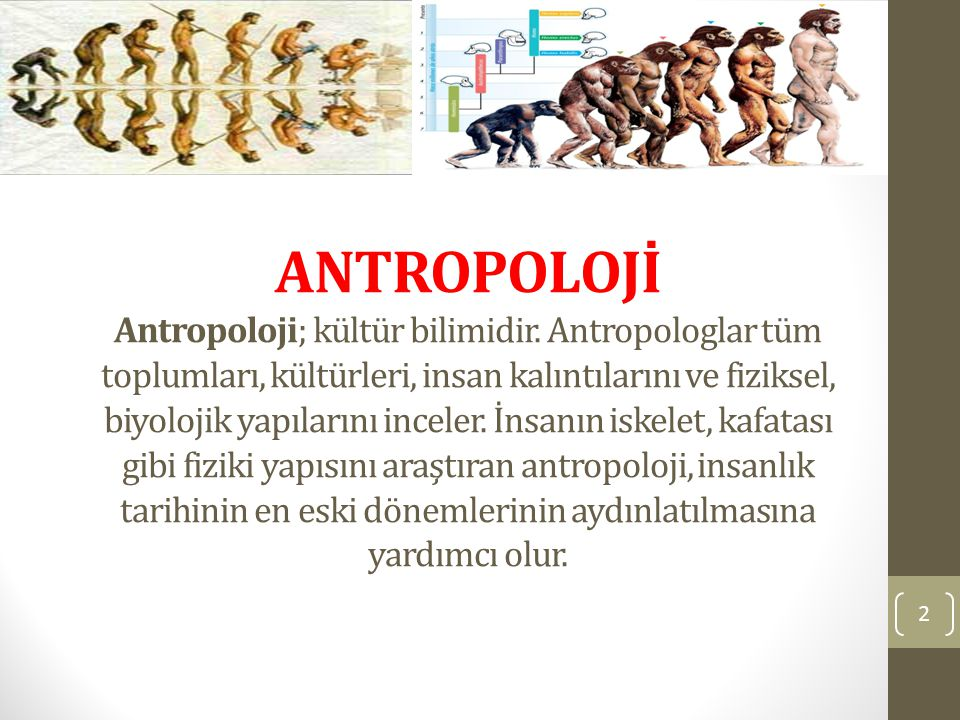 ANTROPOLOJİ Antropoloji; kültür bilimidir