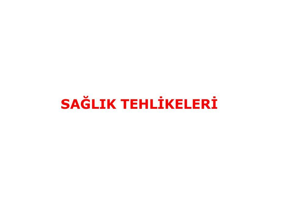 SAĞLIK TEHLİKELERİ 89