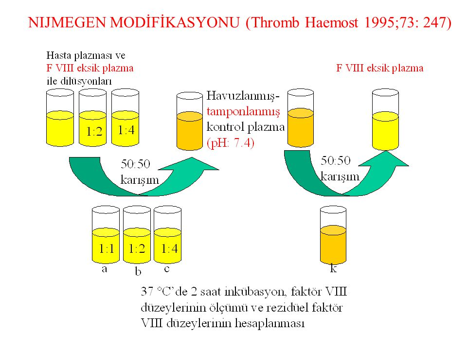 NIJMEGEN MODİFİKASYONU (Thromb Haemost 1995;73: 247)