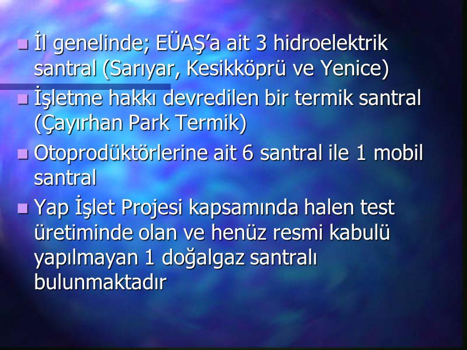 İl genelinde; EÜAŞ'a ait 3 hidroelektrik santral (Sarıyar, Kesikköprü ve Yenice)