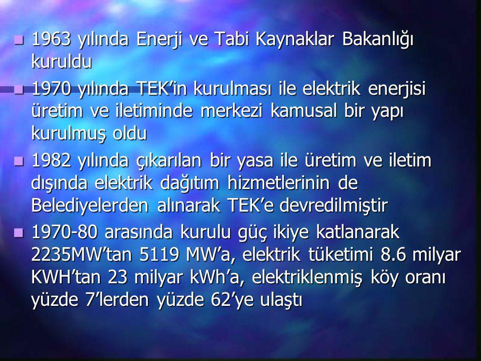 1963 yılında Enerji ve Tabi Kaynaklar Bakanlığı kuruldu