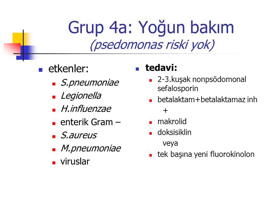 Grup 4a: Yoğun bakım (psedomonas riski yok)