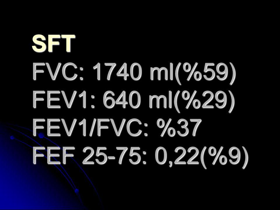 SFT FVC: 1740 ml(%59) FEV1: 640 ml(%29) FEV1/FVC: %37 FEF 25-75: 0,22(%9)