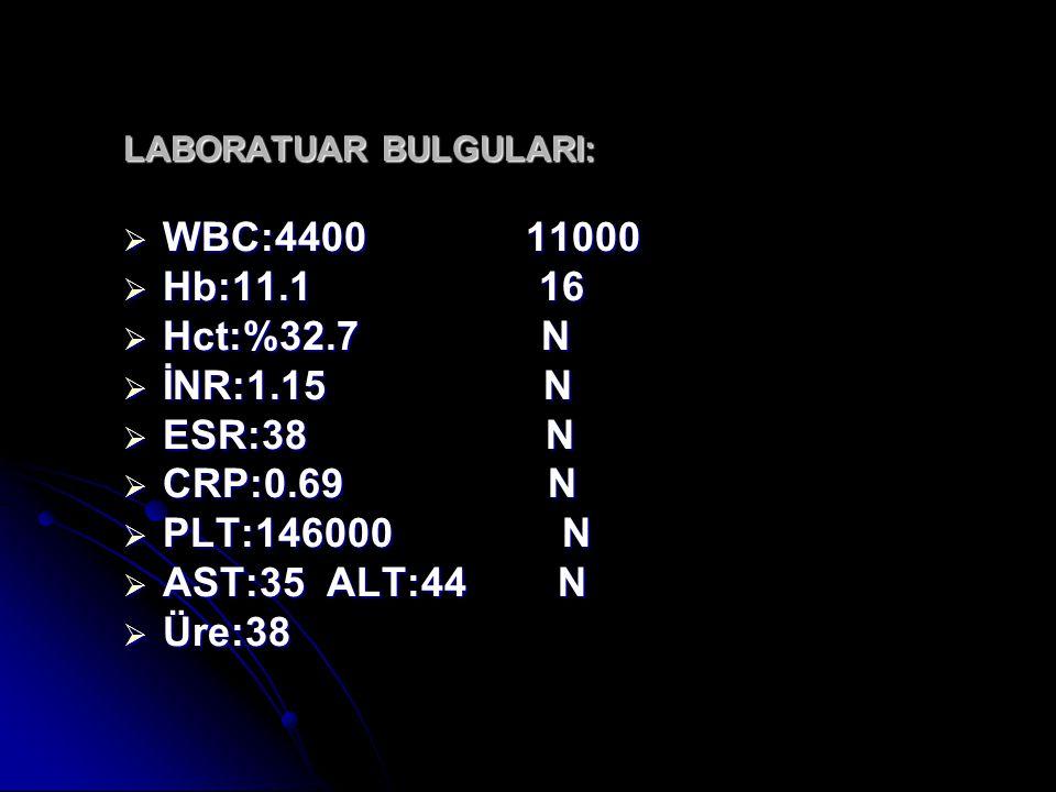 WBC:4400 11000 Hb:11.1 16 Hct:%32.7 N İNR:1.15 N ESR:38 N CRP:0.69 N