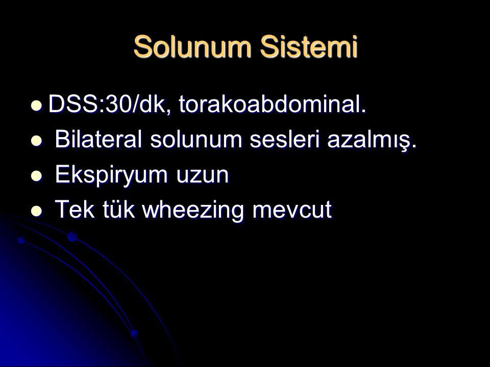 Solunum Sistemi DSS:30/dk, torakoabdominal.