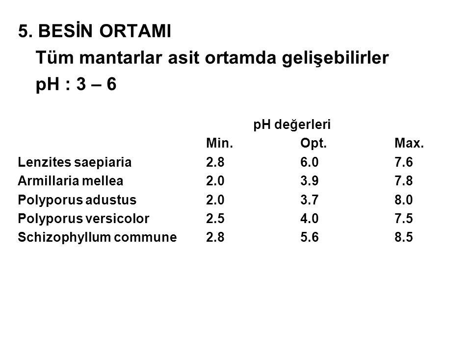 Tüm mantarlar asit ortamda gelişebilirler pH : 3 – 6