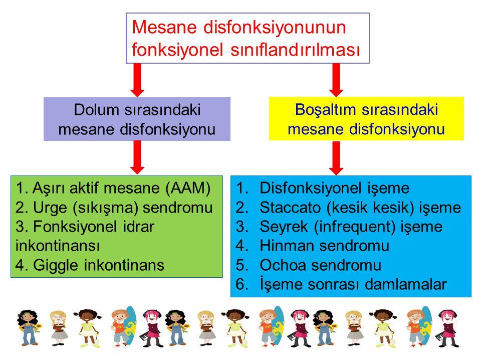 Mesane disfonksiyonunun fonksiyonel sınıflandırılması