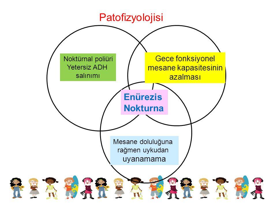 Patofizyolojisi Enürezis Nokturna Gece fonksiyonel