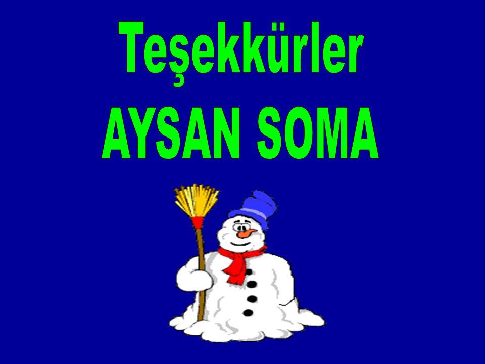 Teşekkürler AYSAN SOMA