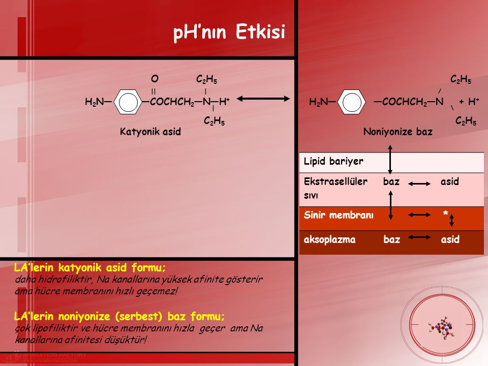 pH'nın Etkisi LA'lerin katyonik asid formu;