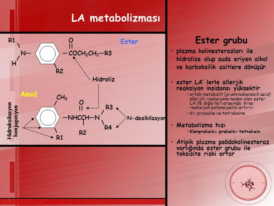 LA metabolizması Ester Amid R1 O