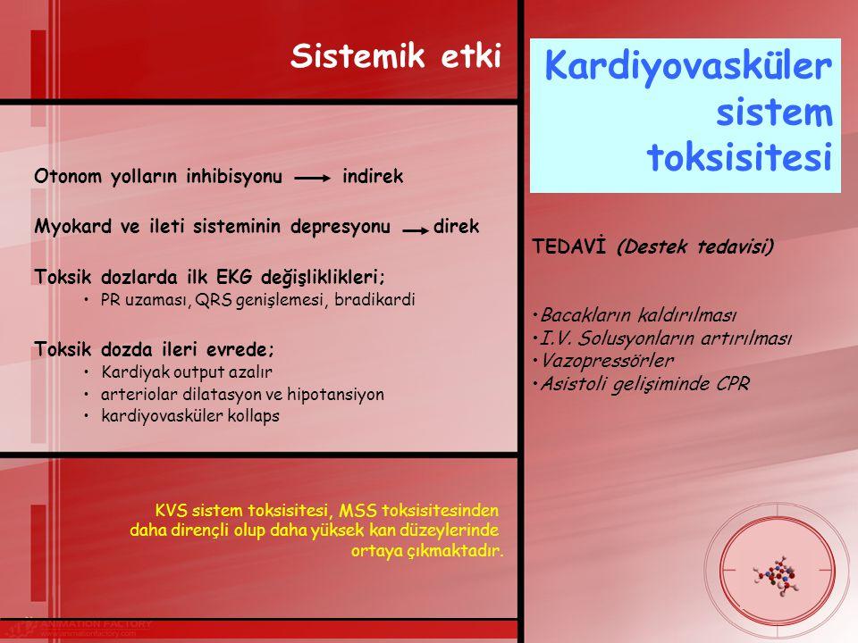 Kardiyovasküler sistem toksisitesi