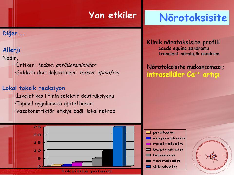 Nörotoksisite Yan etkiler Diğer... Allerji