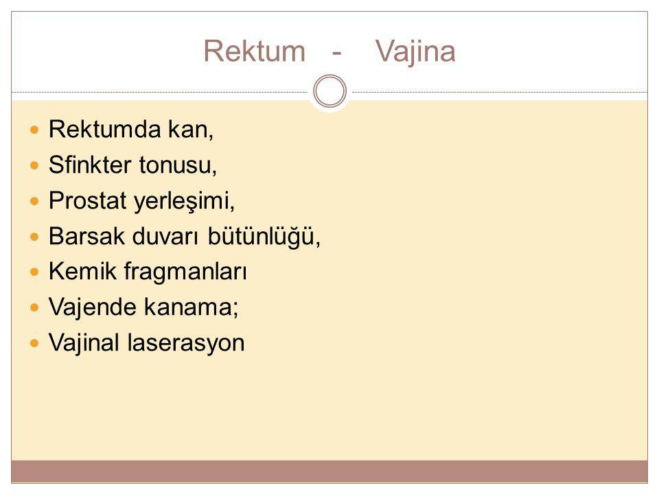 Rektum - Vajina Rektumda kan, Sfinkter tonusu, Prostat yerleşimi,