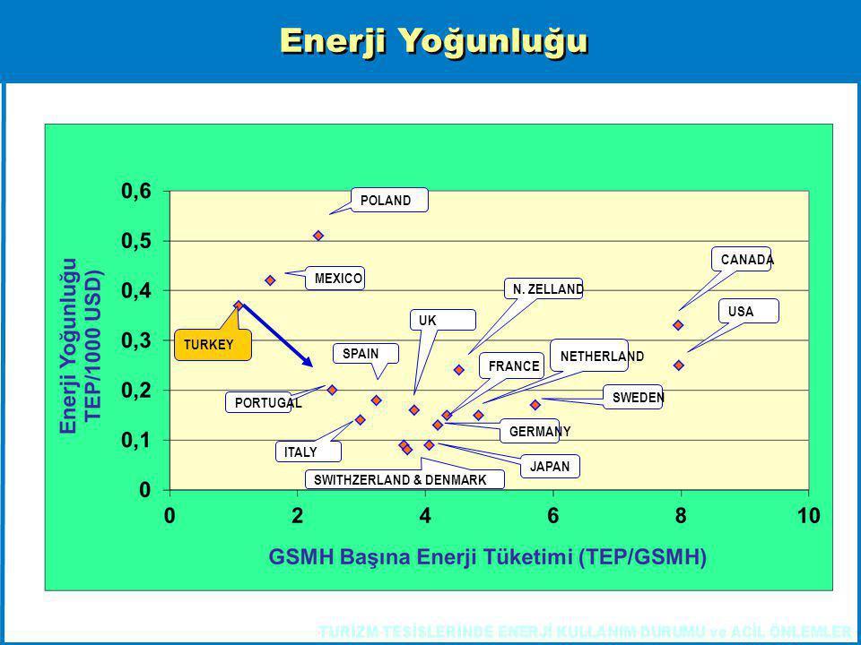 Enerji Yoğunluğu POLAND CANADA MEXICO N. ZELLAND USA UK TURKEY SPAIN