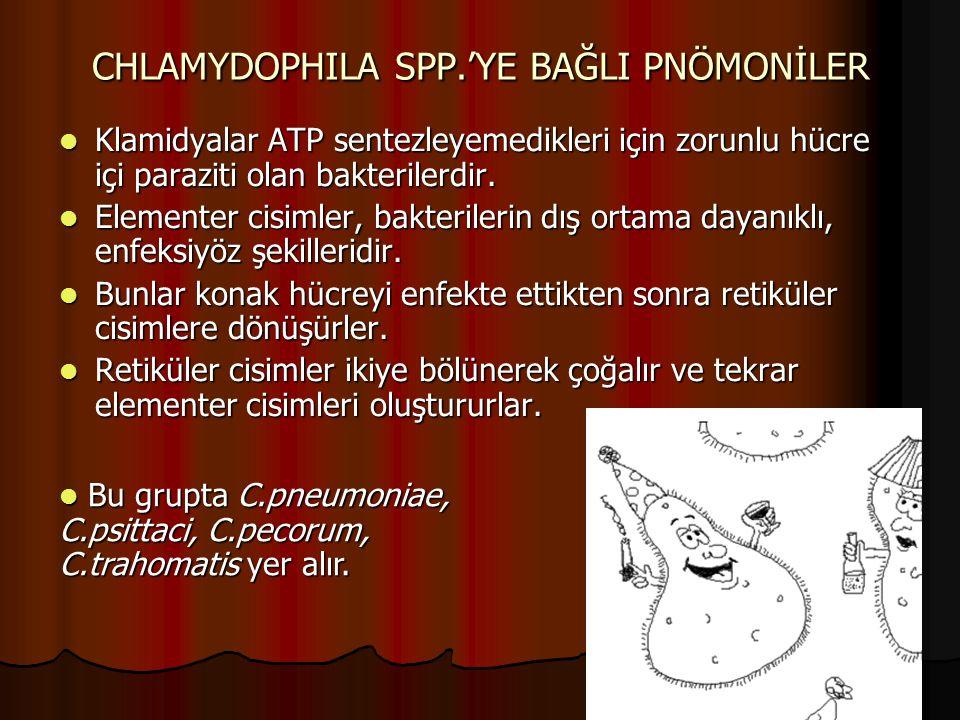 CHLAMYDOPHILA SPP.'YE BAĞLI PNÖMONİLER