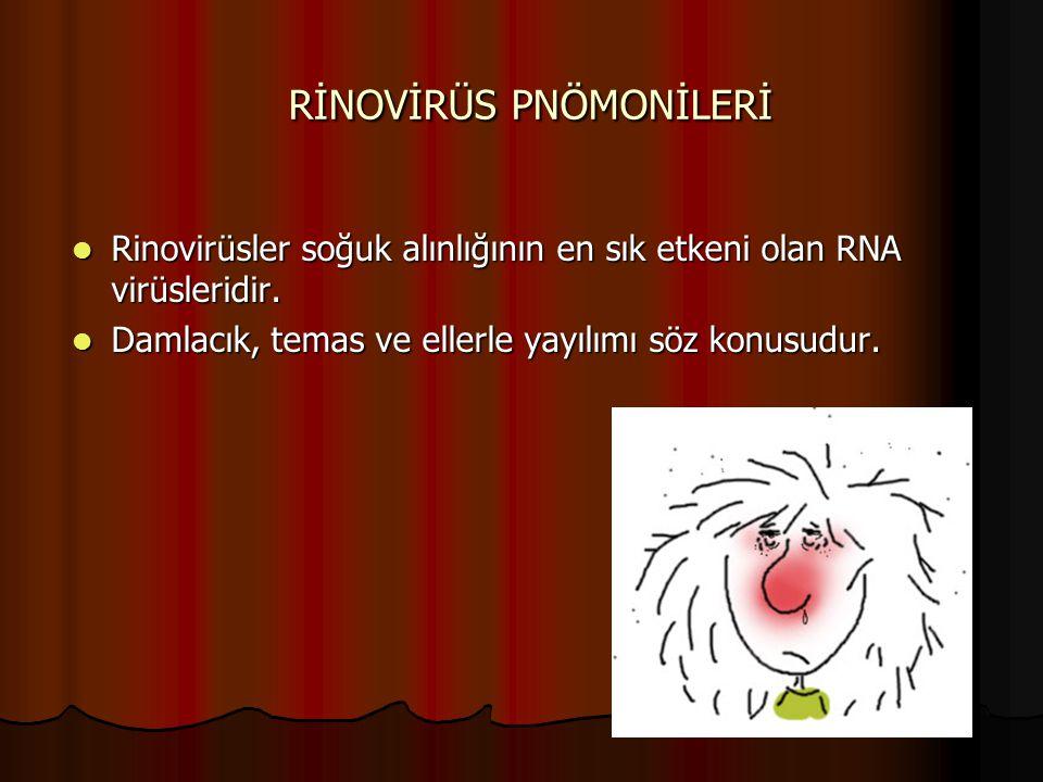RİNOVİRÜS PNÖMONİLERİ