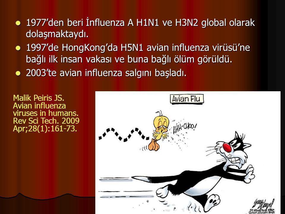 1977'den beri İnfluenza A H1N1 ve H3N2 global olarak dolaşmaktaydı.