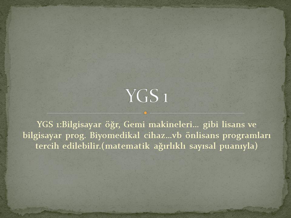 YGS 1