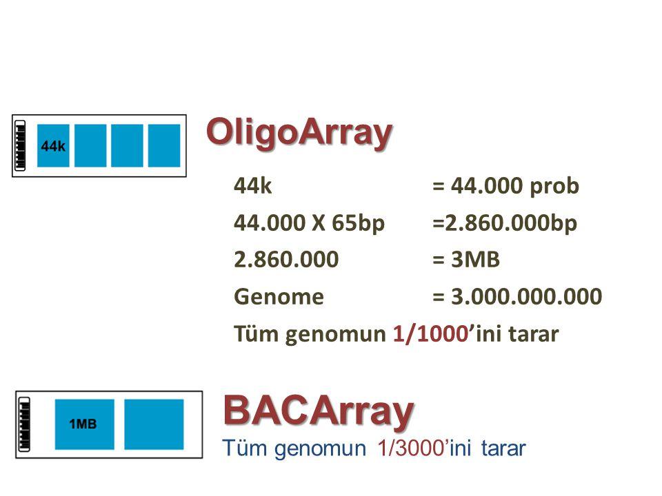 BACArray OligoArray 44k = 44.000 prob 44.000 X 65bp =2.860.000bp