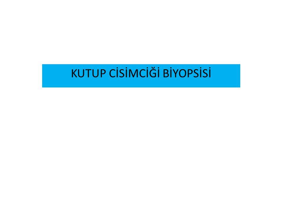 KUTUP CİSİMCİĞİ BİYOPSİSİ