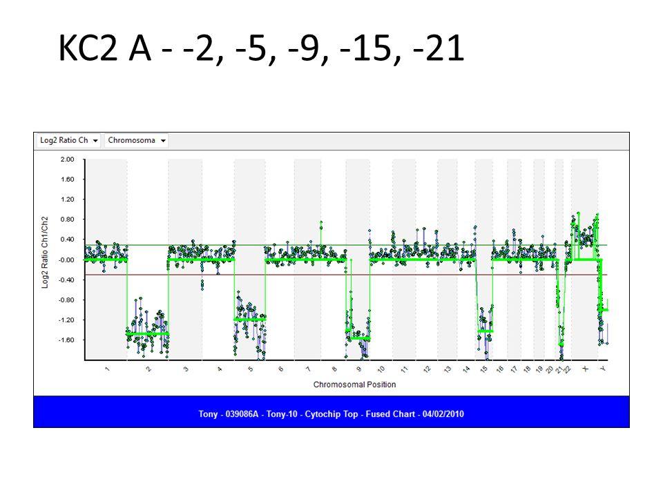 KC2 A - -2, -5, -9, -15, -21