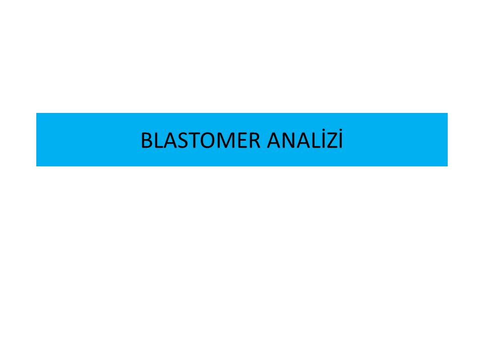 BLASTOMER ANALİZİ