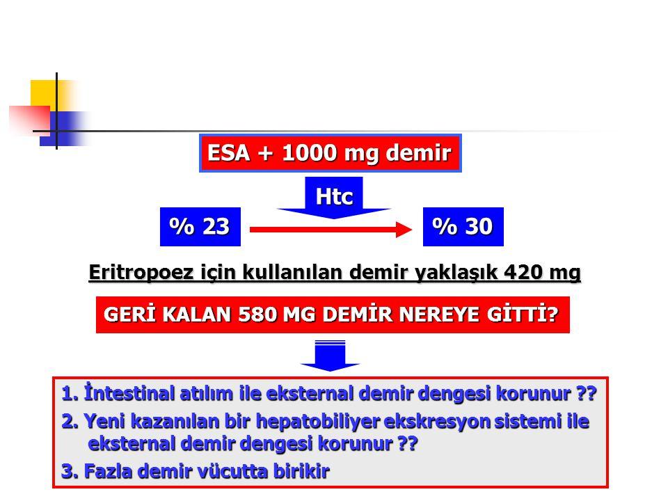 ESA + 1000 mg demir Htc. % 23. % 30. Eritropoez için kullanılan demir yaklaşık 420 mg. GERİ KALAN 580 MG DEMİR NEREYE GİTTİ