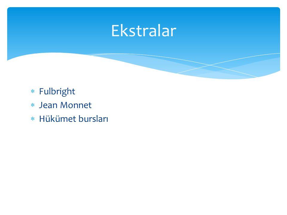 Ekstralar Fulbright Jean Monnet Hükümet bursları