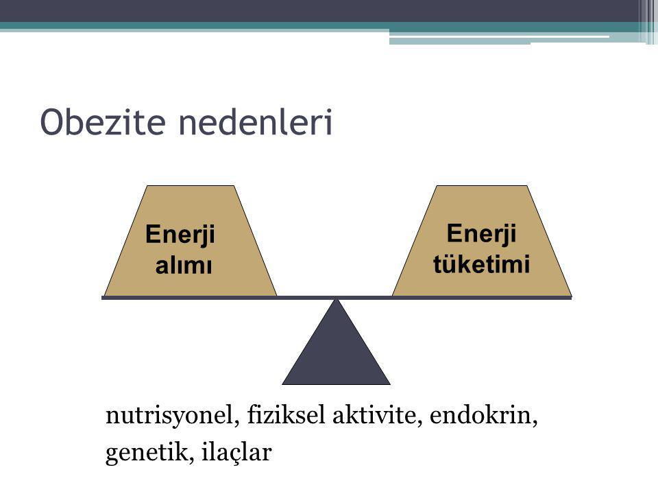 Obezite nedenleri Enerji alımı Enerji tüketimi