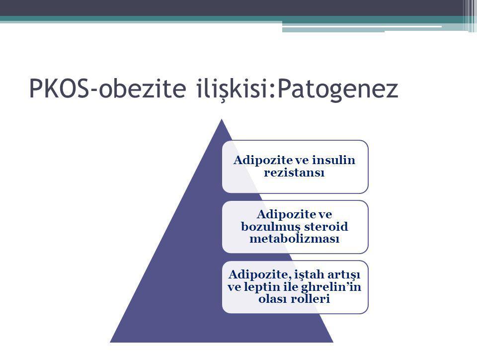 PKOS-obezite ilişkisi:Patogenez
