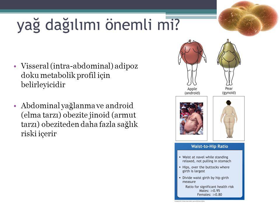 yağ dağılımı önemli mi Visseral (intra-abdominal) adipoz doku metabolik profil için belirleyicidir.