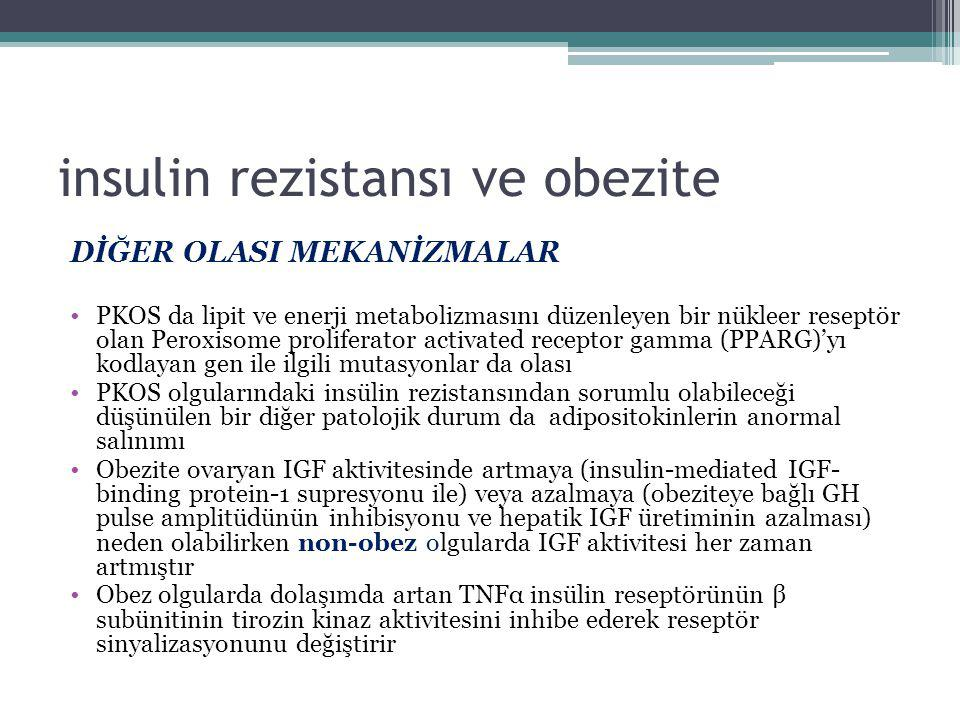 insulin rezistansı ve obezite