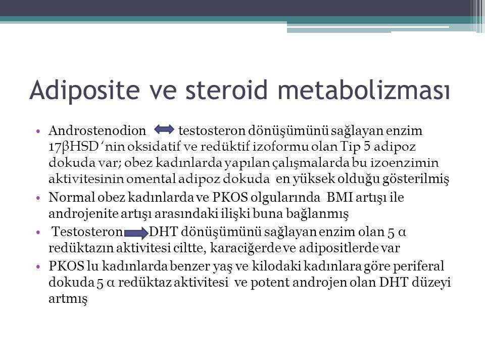 Adiposite ve steroid metabolizması